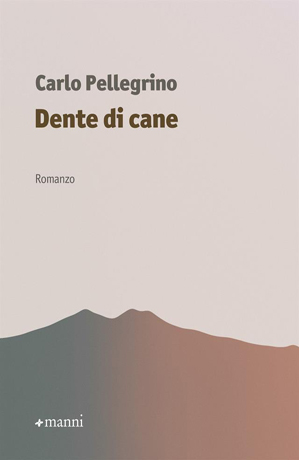 Romanzo di Carlo Pellegrino